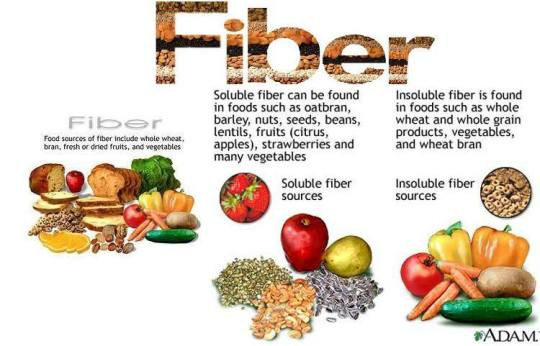 SASA'S HEALTHY NUTRITION TIPPS: FACTS ABOUT FIBRE